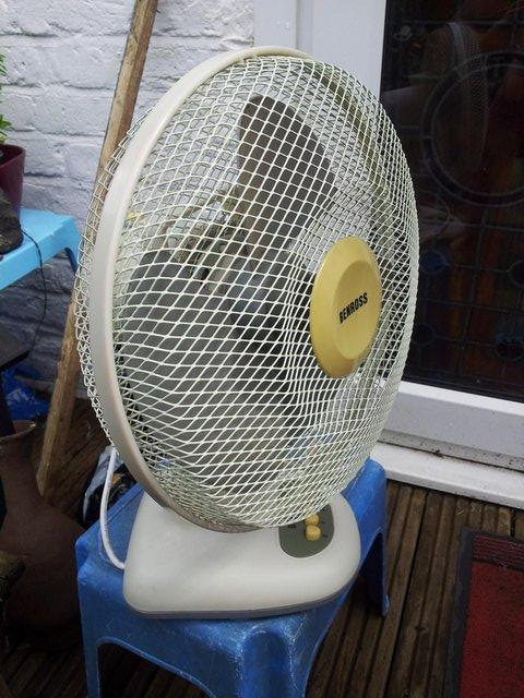 Preview of the first image of Benrosh 12 inch oscilating desk fan.