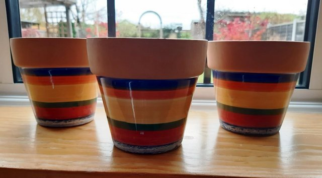 Image 2 of COLOURFUL PLANT POT SET ideal for window sill