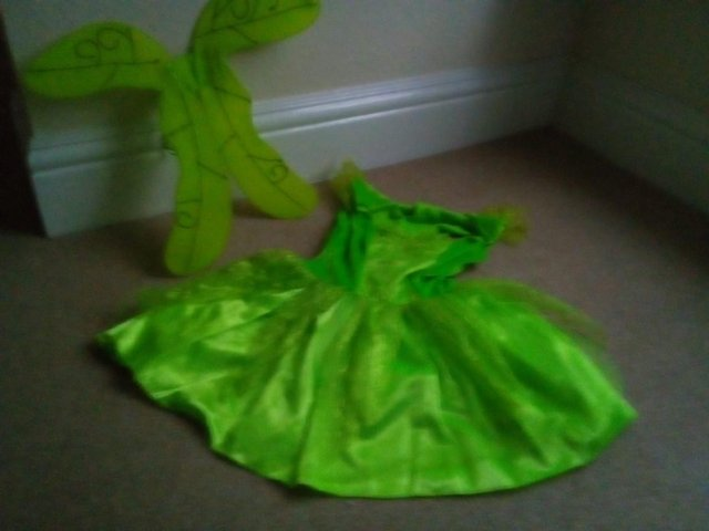 Preview of the first image of Fairy Costume.
