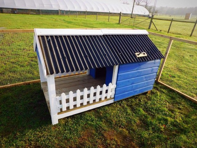 Image 2 of The Glamper - Kennel/ poultry house/micropig