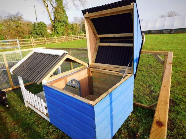 Image 3 of The Glamper - Kennel/ poultry house/micropig