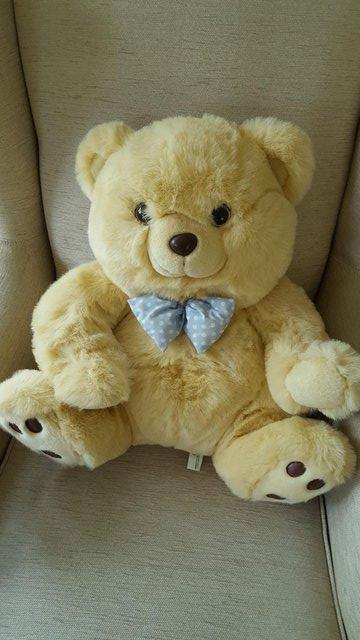 Preview of the first image of Jade Teddy Bear BRAND NEW.