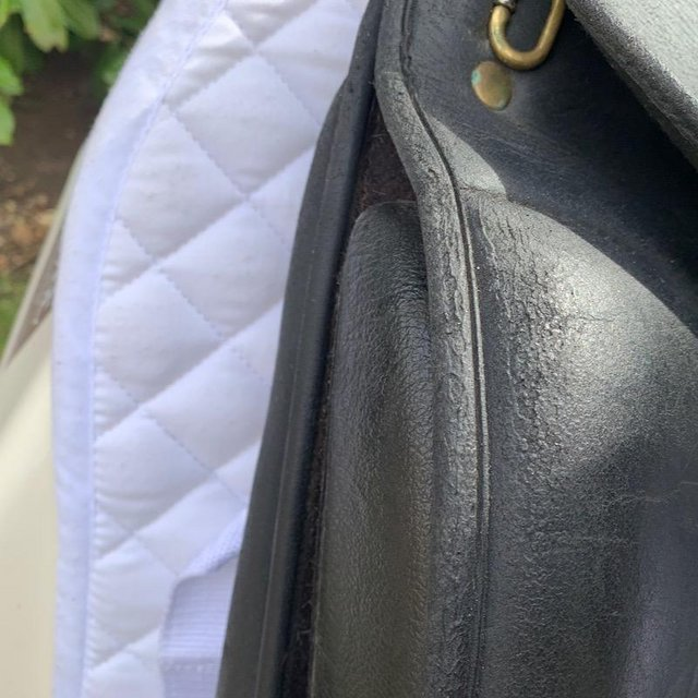 Image 6 of Wintec Isabell Werth 17.5 inch dressage saddle