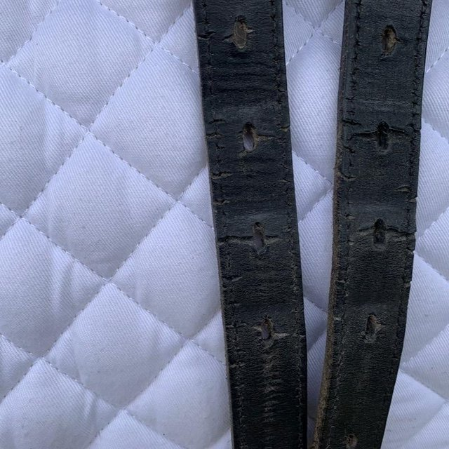 Image 15 of Wintec Isabell Werth 17.5 inch dressage saddle
