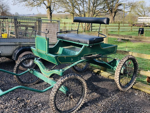 Image 2 of Driving Cart