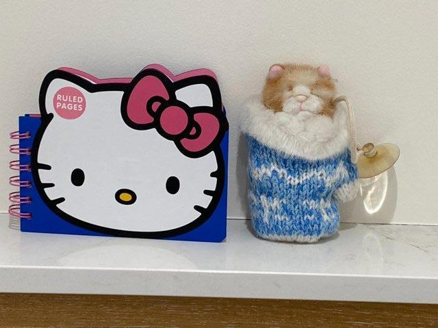 Preview of the first image of HELLO KITTY PAPERCHASE NOTEBK BN+ KITTEN INMITTEN SUCTIONCUP.