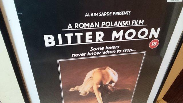 Image 2 of Framed Original roman polanski film poster
