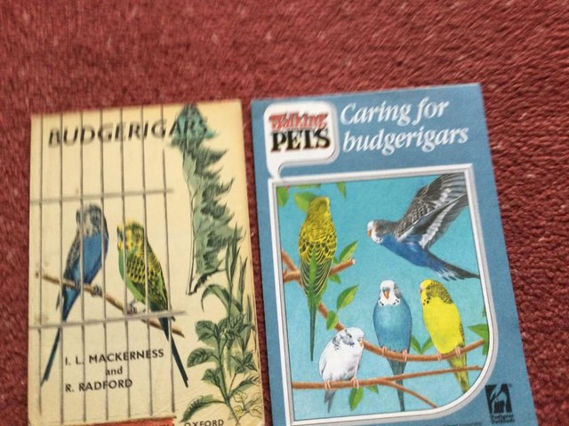 Preview of the first image of Vintage Budgerigar booklet..