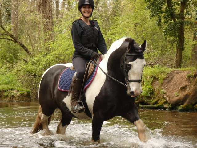 Image 6 of Vincent 14.1hh 6yo gelding for share in Arborfield