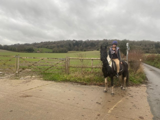 Image 3 of Great All Rounder 14 y/o 13.2hh