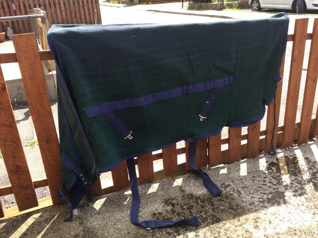 Preview of the first image of Wicking rug.