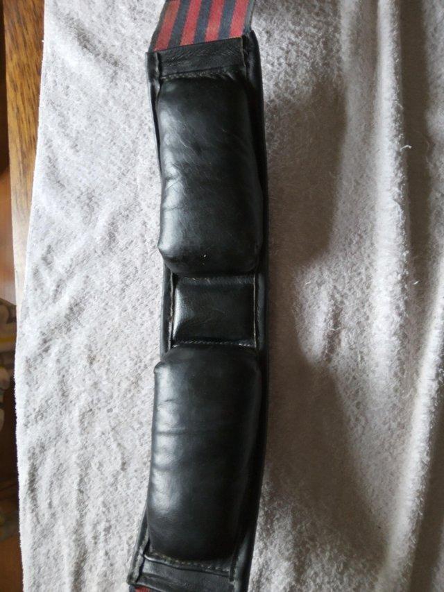 Image 2 of Lunge roller