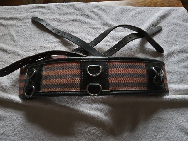 Image 3 of Lunge roller