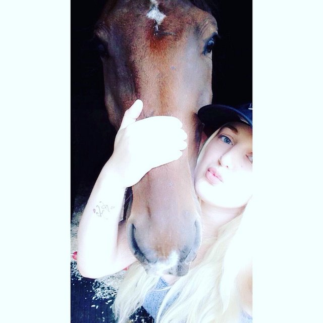 Image 3 of Looking for a horse share around Enfield