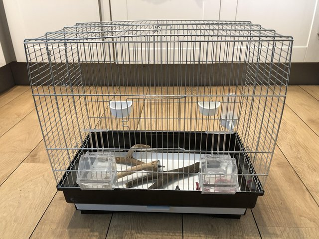 Image 2 of Bird budgie cage with accessories