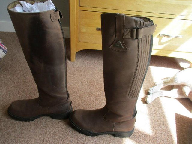 Image 4 of Mountain Horse Long Riding Boots Size 8