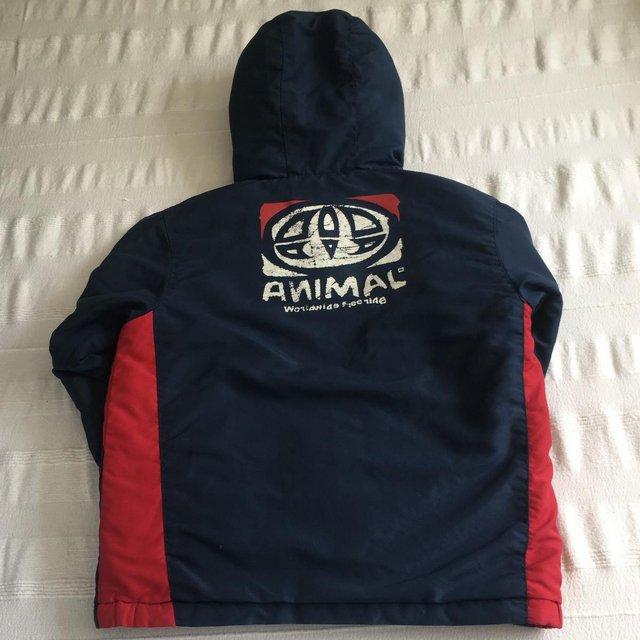 Image 3 of Animal brand navy/red padded jacket, hood. 7-8 years.