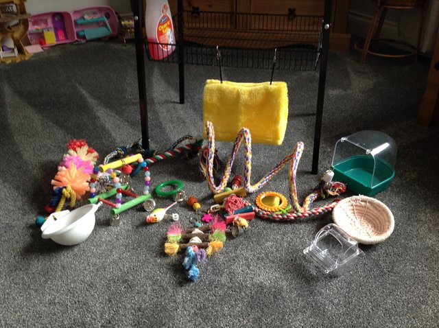 Image 2 of Bird cage and extras