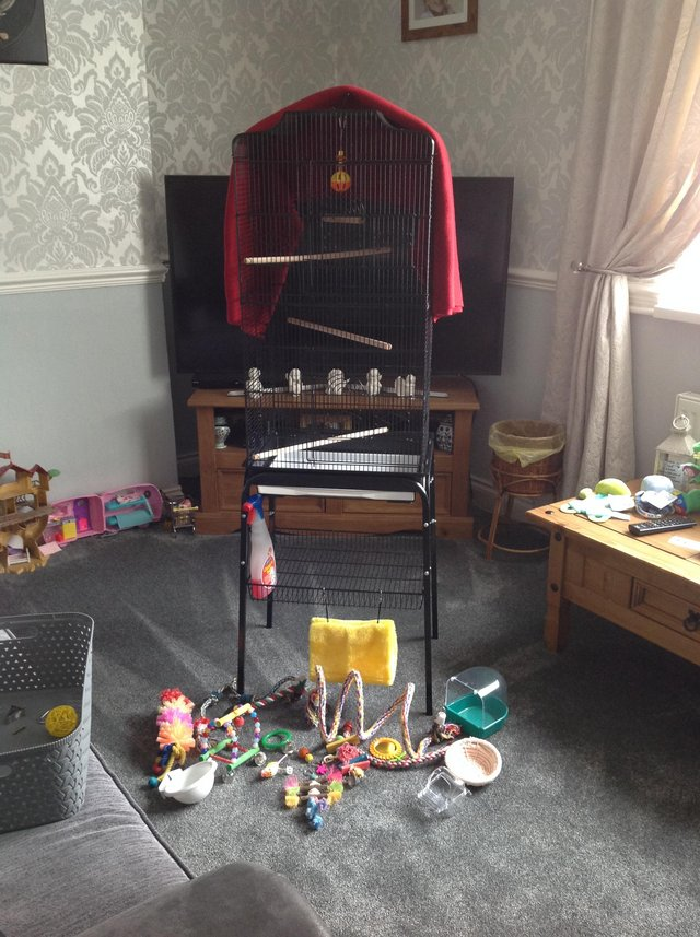 Image 3 of Bird cage and extras