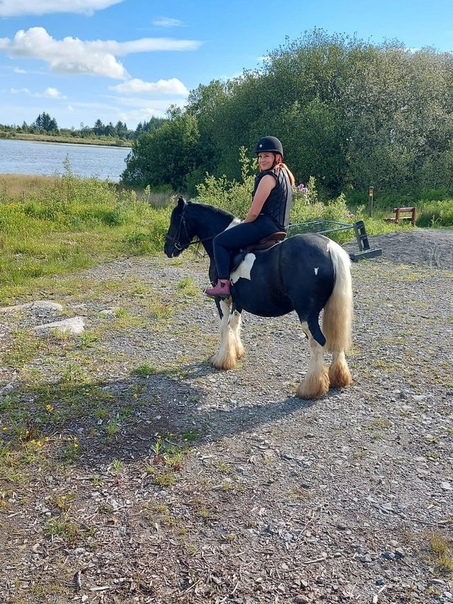 Preview of the first image of 13.1HH COLOURED GYPSY COB 8YO MARE.