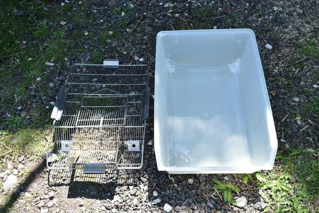 Image 2 of Rodent Cages