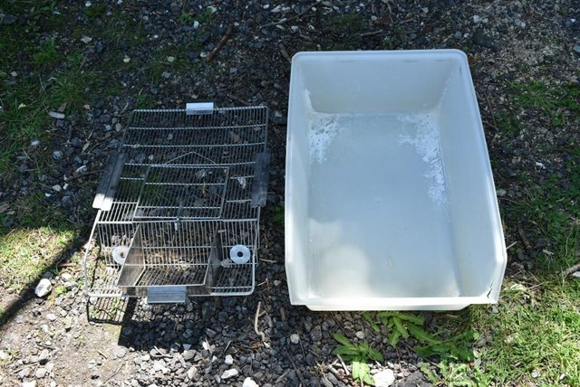 Image 6 of Rodent Cages