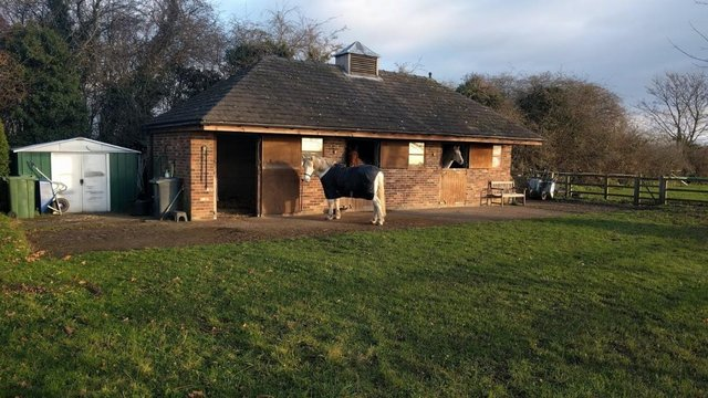Image 2 of DIY grazing/stable available