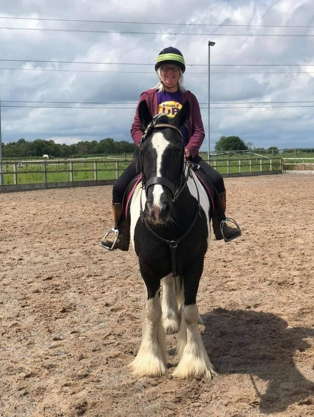 Image 3 of 14.2hh gelding for share/ part loan Kearsley/ Ringley