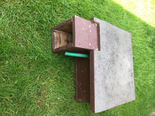 Preview of the first image of Hedgehog/Hamster box.