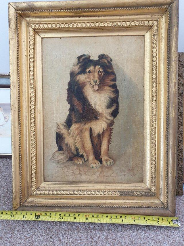 """Preview of the first image of Oil of collie dog """"lassie type""""."""