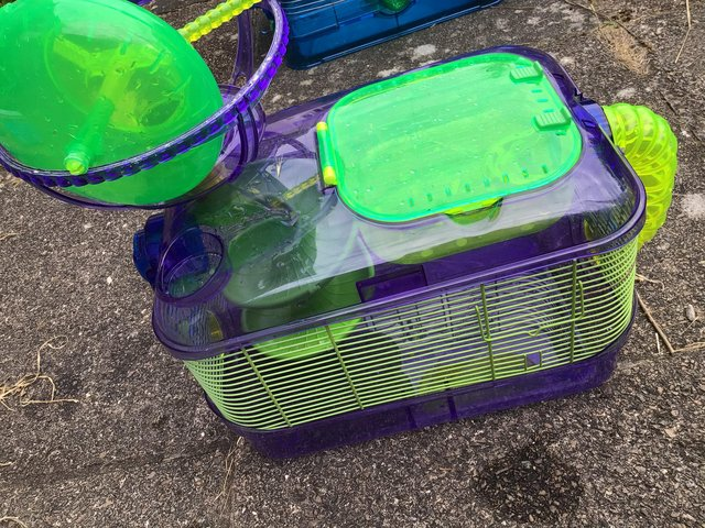 Image 2 of Critter trail X hamster carrier for dwarf hamsters