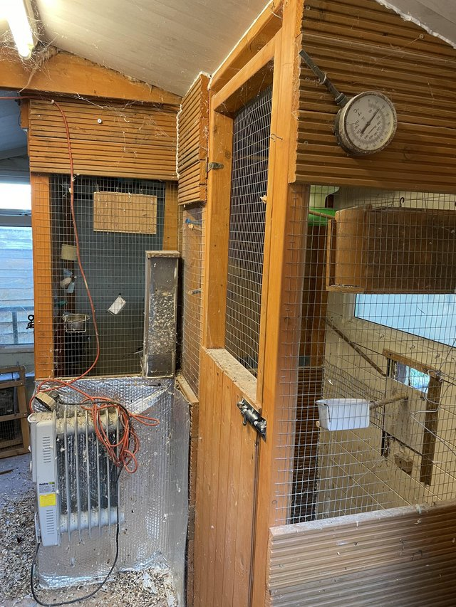 Image 3 of Bird aviary for sale. Inner flight and outer flights.