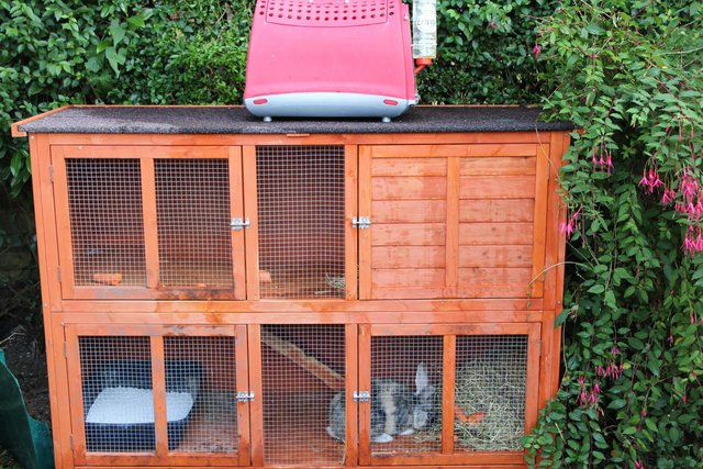 Preview of the first image of RABBIT, 6FT DOUBLE HUTCH + XTRAS.