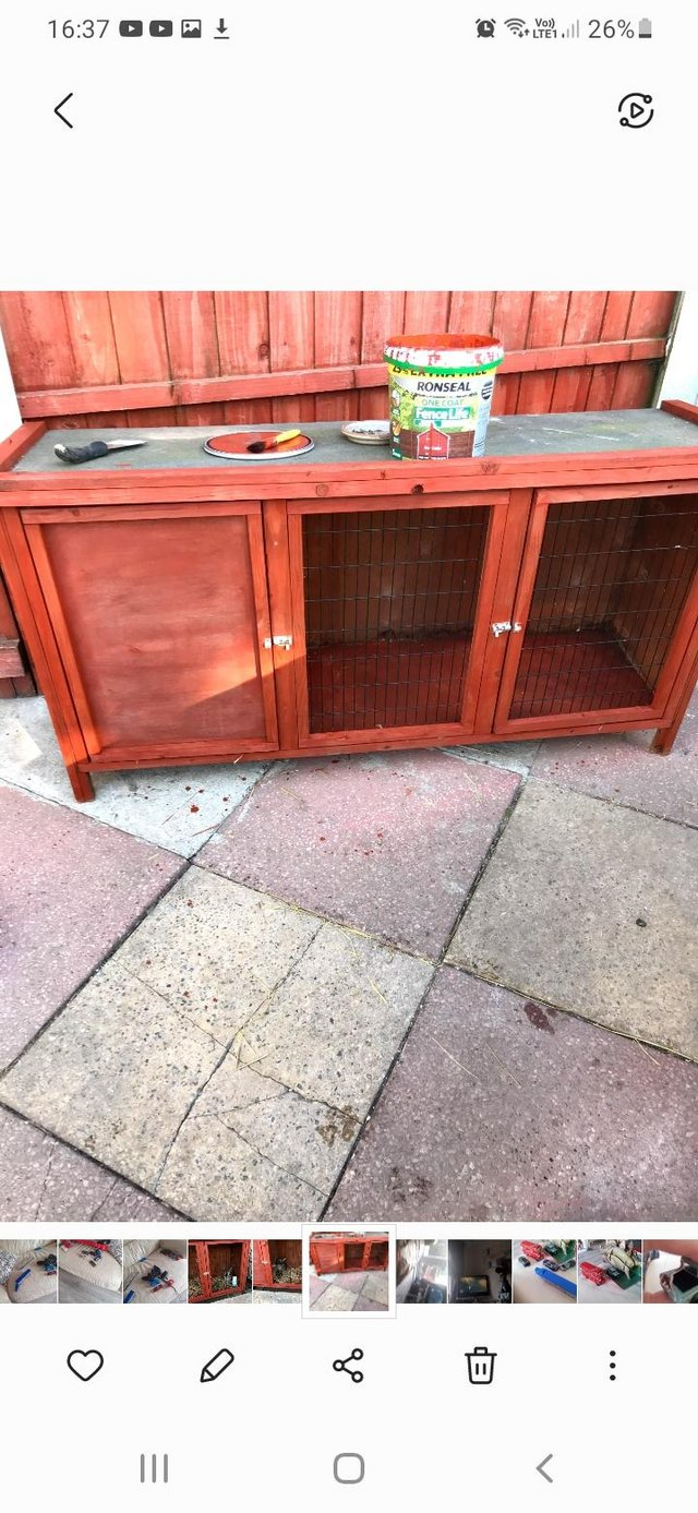 Image 2 of 12 month old rabbit and hutch for sale