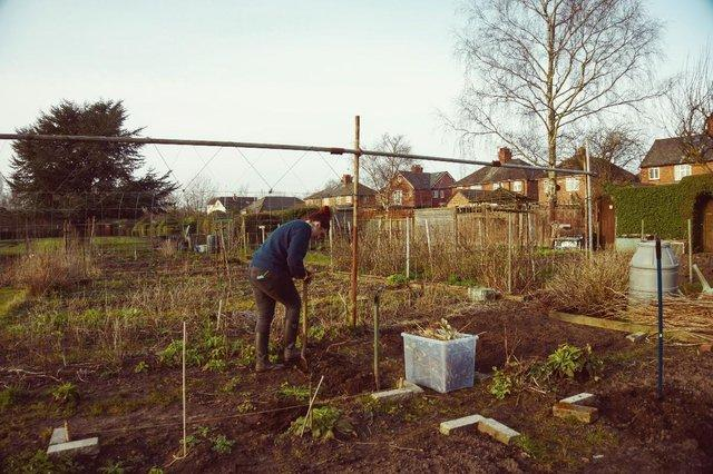 person in allotment